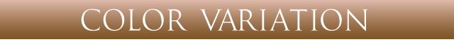 【送料無料】エバーカラーワンデーモイストレーベル EverColor1day MOISTLABEL [度あり・度なし][1day][10枚入り]